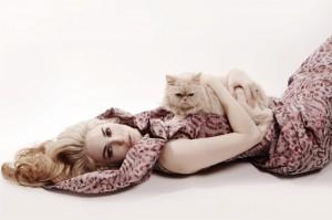 Top Advertising Photographer Shaun Alexander New York and Los Angeles